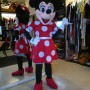 Disfraz de Minnie  (1)