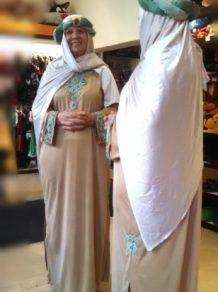 Todo Disfraz - Arabe Mujer 2534