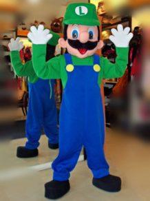 Todo Disfraz - Luigi 2560