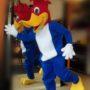 Todo Disfraz – Pájaro Loco 2567.