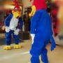 Todo Disfraz – Pájaro Loco 2567..
