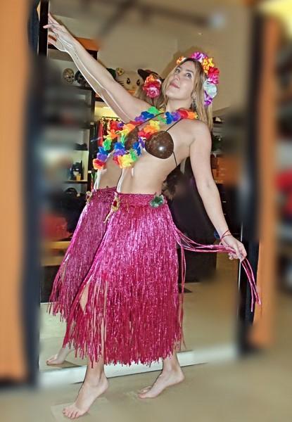 Todo Disfraz - Hawaiana 2674